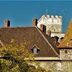 Tauben am Rothschildschloss