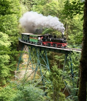 20170722 99 1542-2 2. Publikumsfahrt nachmittags auf Wetterbach-Viadukt - Forst in Privatbesitz , deshalb kein Freischnitt Foto Joachim Schmidt-14