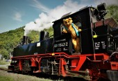 Ötscherbär Lokomotive Führerstand
