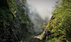 Dampf 1