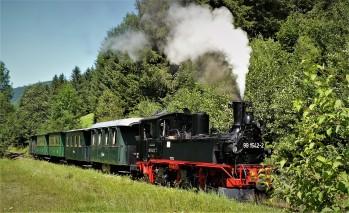 Dampfzug gesamt Foto Wachauer