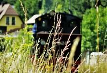 Lok im Gras von hinten Foto Wachauer