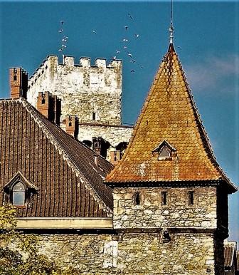 Rothschildschloss Tauben hoch