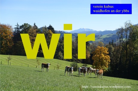 wir Waidhofen kühe Ötscher