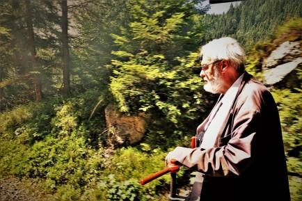 Schuhfried Wald