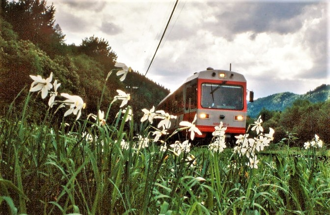 Bahn Peter017 (3)