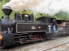 DSCN2466 (2)