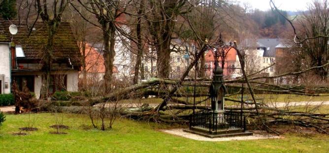 Schillerpark 4. 1.3.2008 12 Uhr