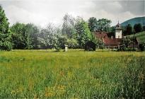 Hofer 1991