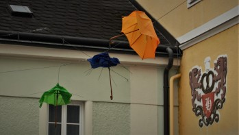 Schirme Titel Ende