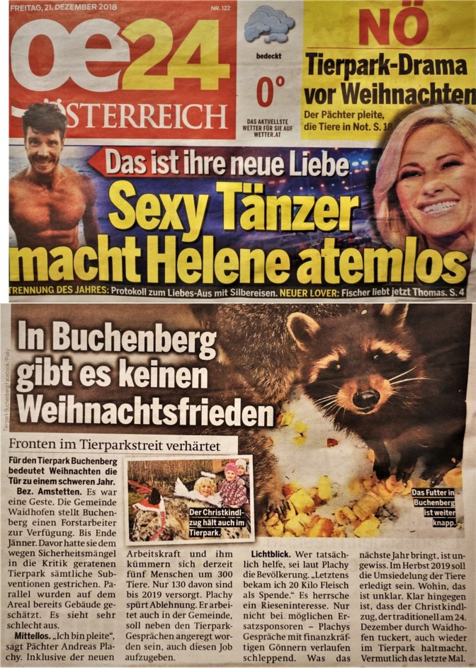 Österreich 21. Dezember 2018 (2)
