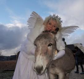 Tierpark mit Christkindl 2018 Esel Himmel