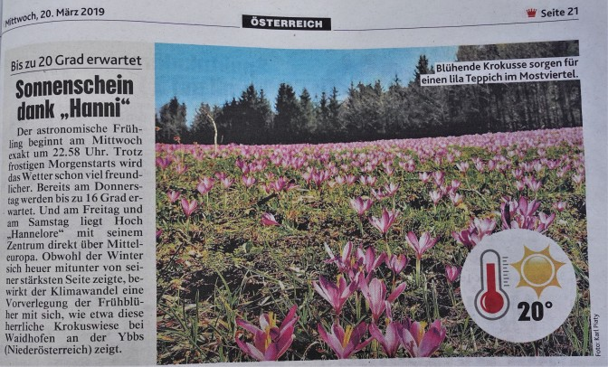 Krone Krokus österreichweit 20.3.2019