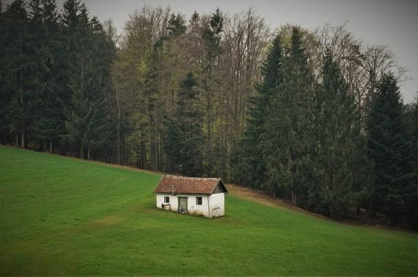 Das Häuschen der Ötscherbärin 2 (2)