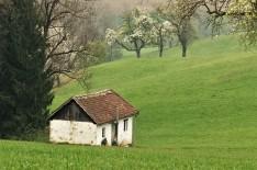 Das Häuschen der Ötscherbärin 3