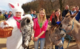 Osterhase Buchenberg Pferd und Esel