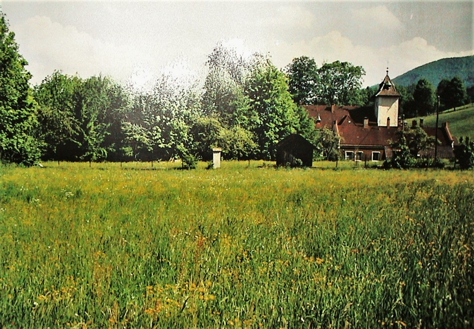 Hofer 1991 (2)