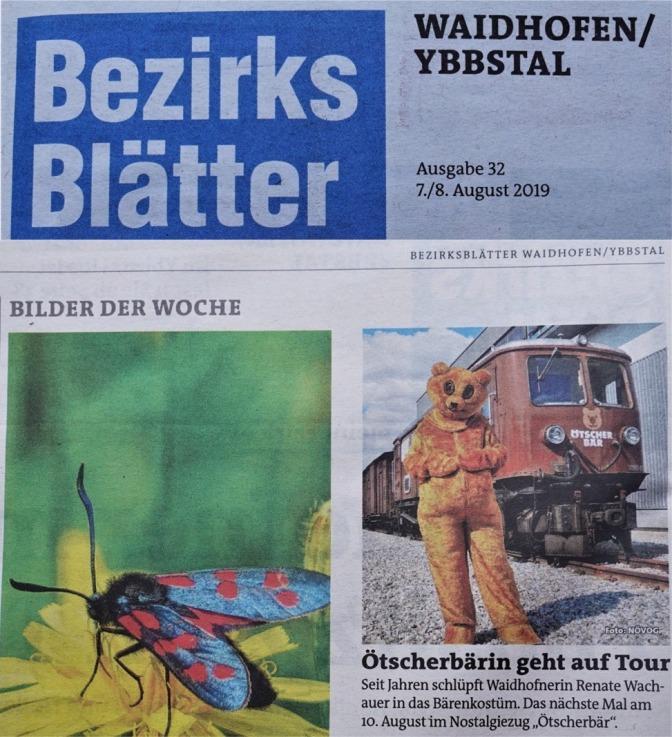 Ötscherbär Bezirksblätter