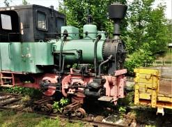 DSC07530 (2)