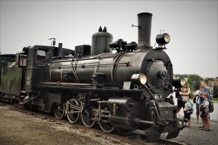 DSC07646 (2)