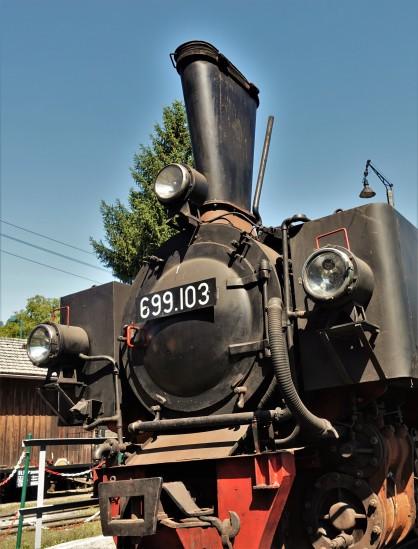DSC07718 (2)