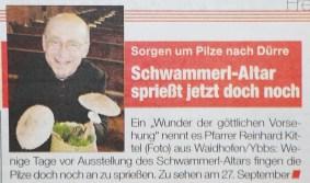 Kittl Schwammerlaltar Heute 2015