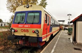 DSC01776 (2)