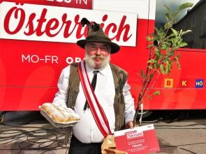 Marko Apfelbäumchen 2