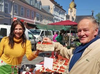 Reichenecker kauft Erdbeeren 2 29.4.2016