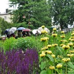 Gartentag im Regen