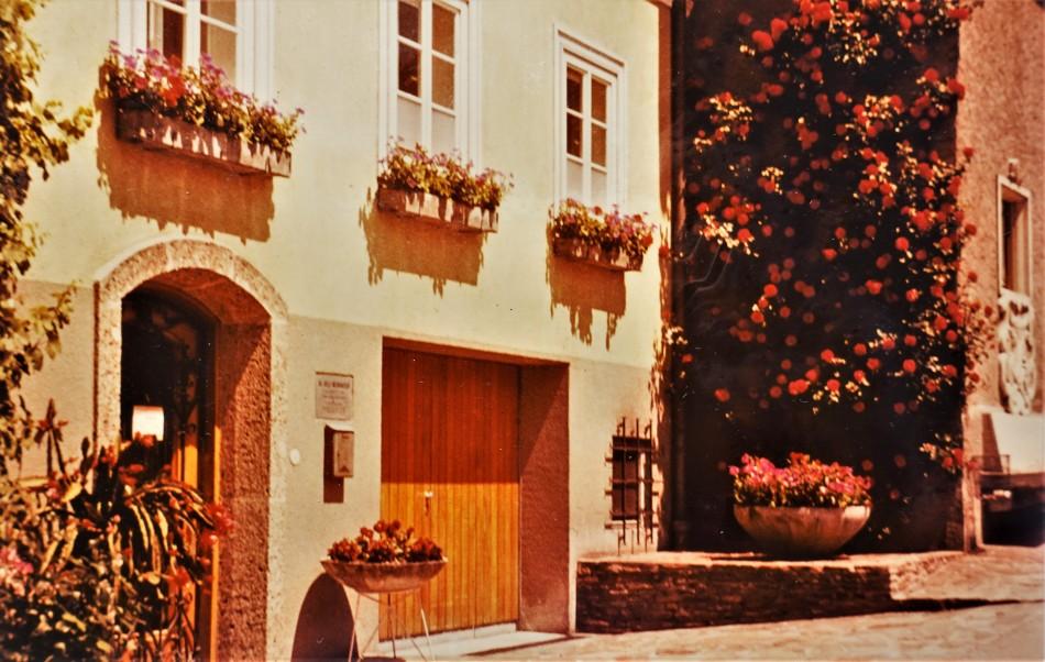 Freisingerberg 1990